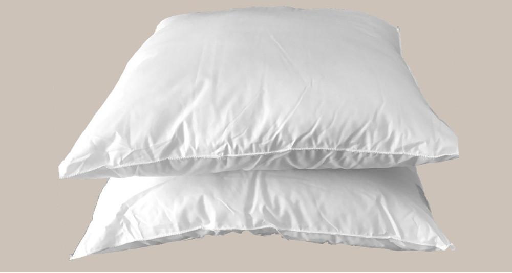 Deux oreillers Chambre d'hôte