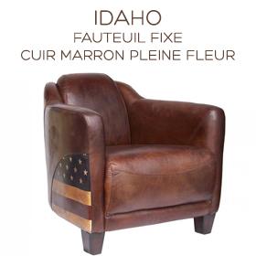 fauteuil club Idaho en cuir