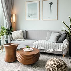 Pièce de la maison : Salon / Living-room