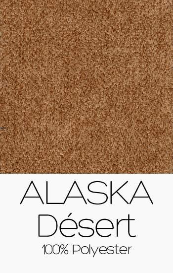 Alaska 04 Désert