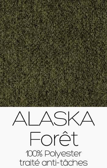 Alaska 17 Forêt