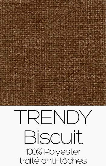 Trendy 102 Biscuit