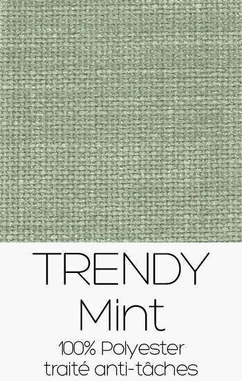 Trendy 21 Mint