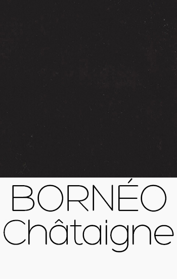 Bornéo Chataigne