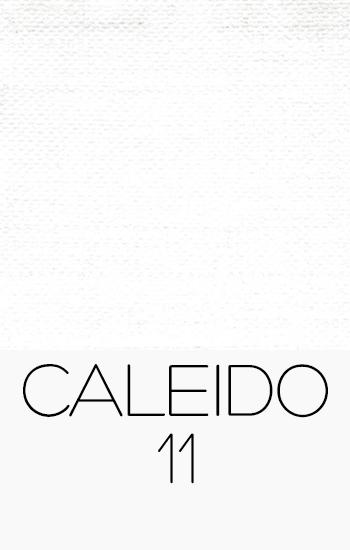 Caleido 11