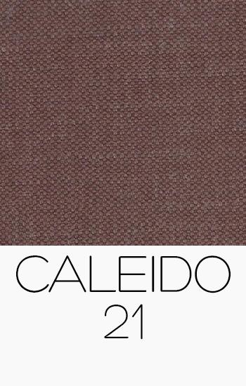 Caleido 21