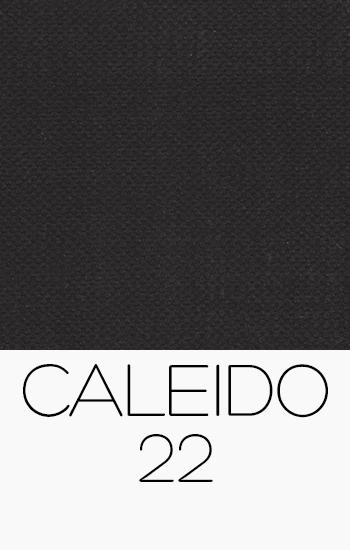 Caleido 22
