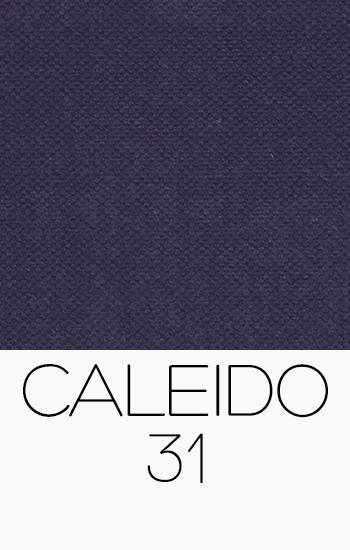 Caleido 31