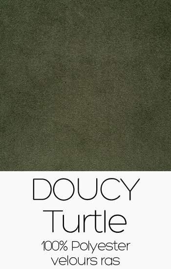 Doucy Turtle