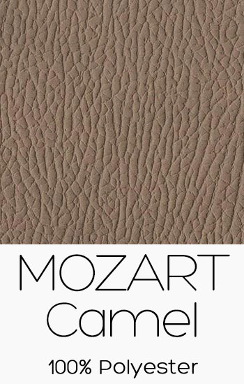 Mozart Camel
