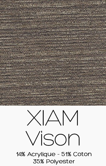 Xiam Vison