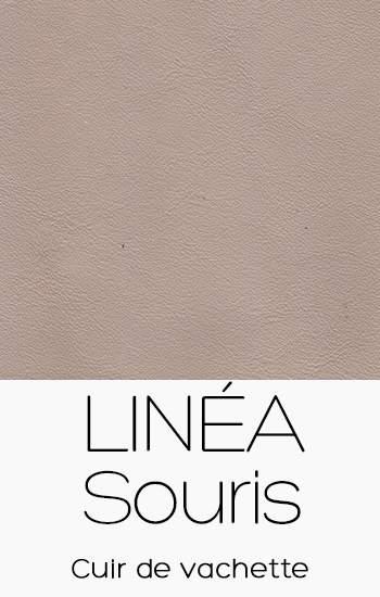 Linéa Souris
