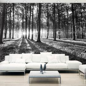 Papier peint imprimé photos numérique paysages
