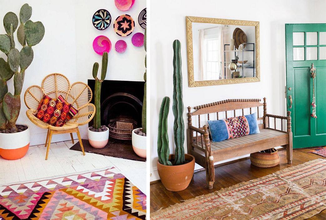 Cactus Déco style Mexique Californie texas