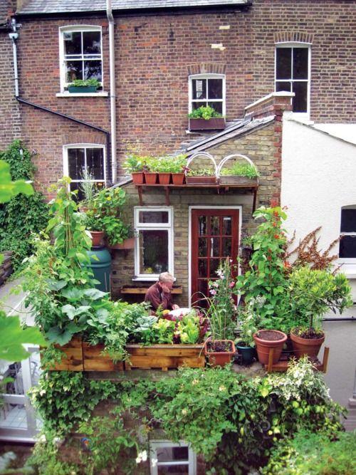Petit potager urbain sur une terrasse