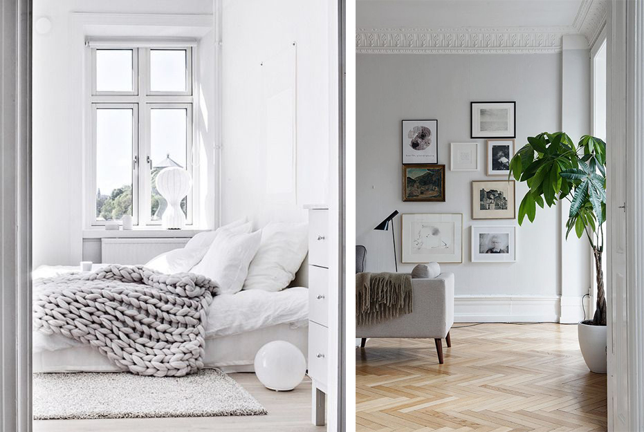 Couverture cosy en laine grosse mail, plante verte et minimalisme