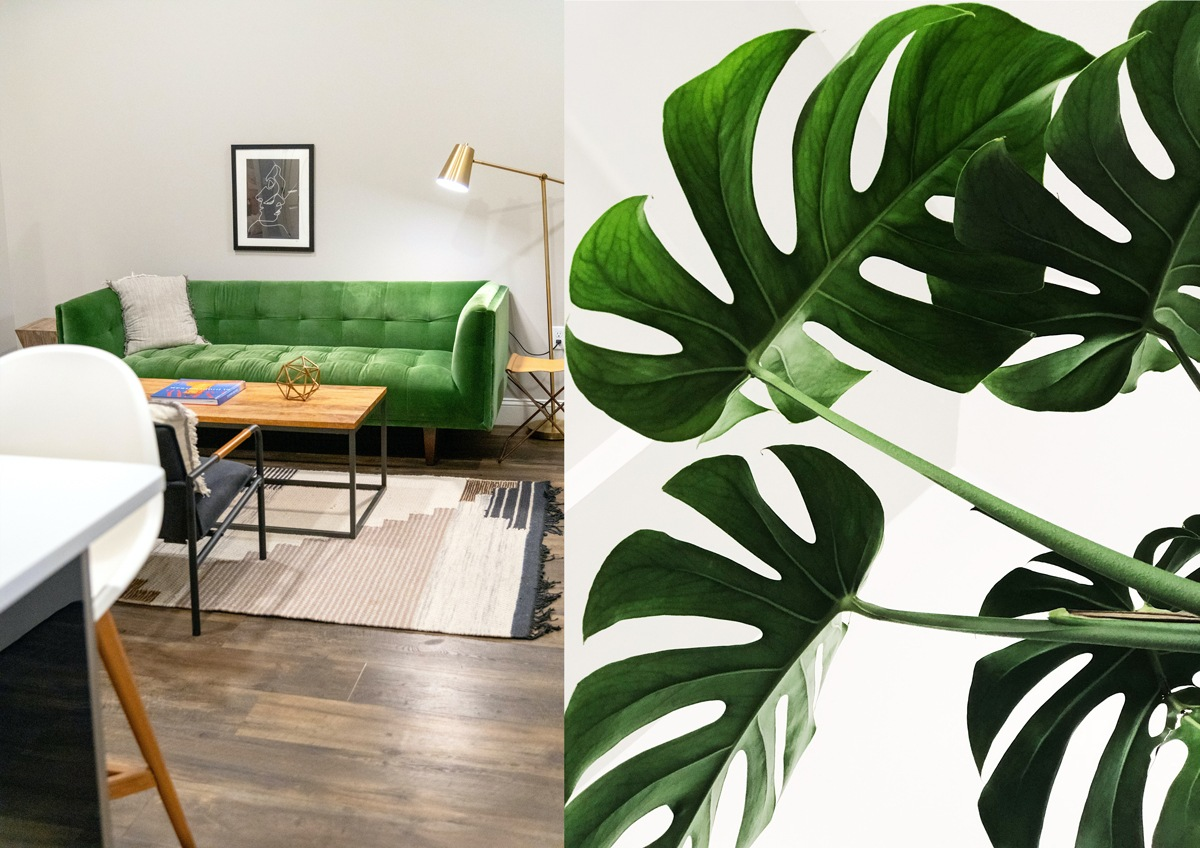 Canapé vert monstera urban jungle green sofa