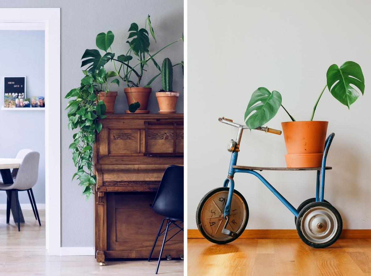 Recycler de vieux objets de brocante : un piano, un tricycle et on pose de jolies plantes dessus !