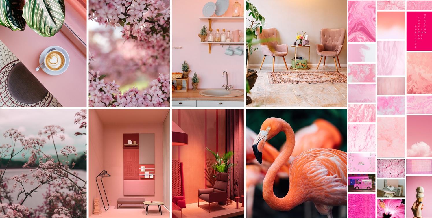 Nuances de roses : corail, saumon, orange, rose, blush, poudré, antique...