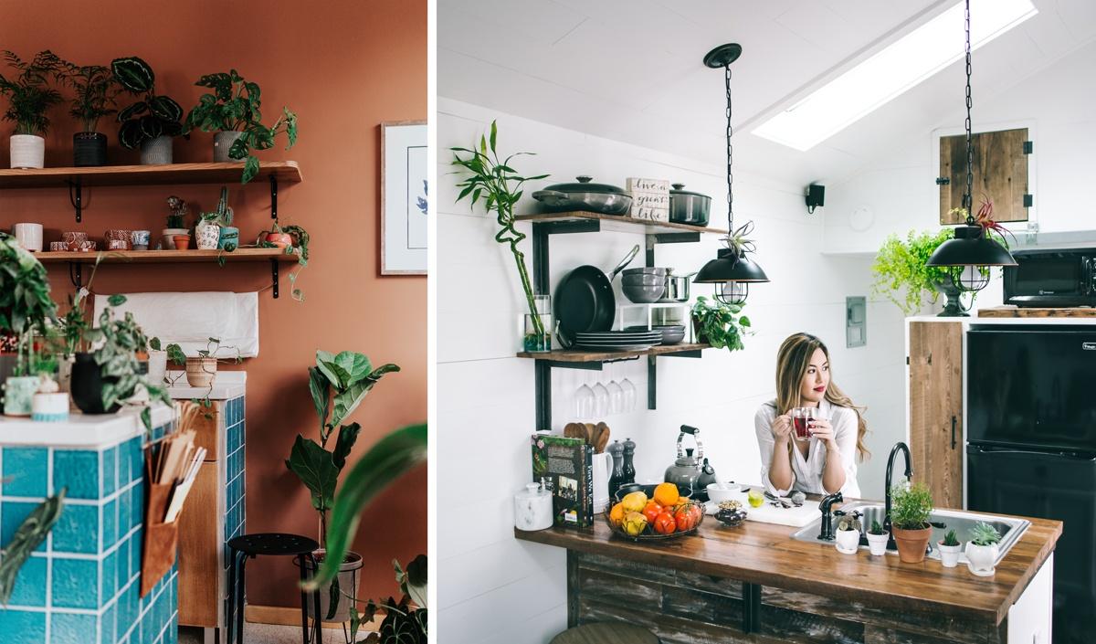 Des plantes dans la cuisine sur les étagères