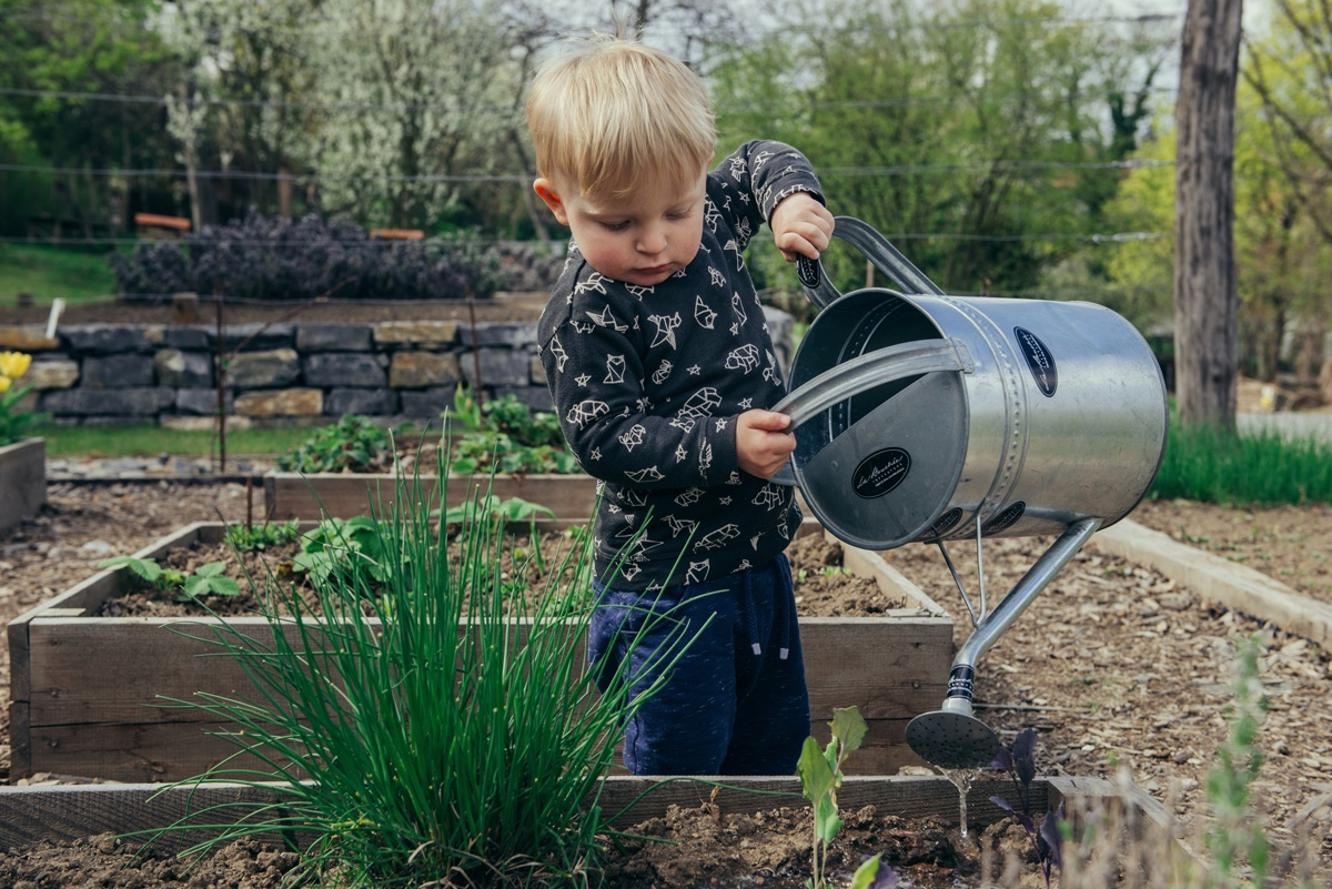 Jardin potager, idéal pour les enfants et la découverte du vivant