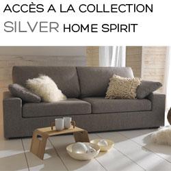 Collection Silver Home Spirit