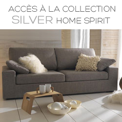 Collection Silver Home Spirit