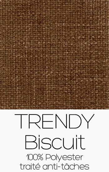 Trendy 102 - Biscuit
